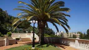 Bahai Gärten Lizenzfreie Stockfotografie