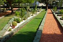 Bahai garden Stock Image