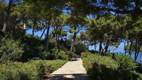 Bahai Gardens. Cascading in Israel with sea view Royalty Free Stock Photos