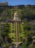 The Bahai Gardens in Haifa. Bottom view Royalty Free Stock Photography