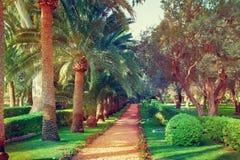 Bahai ogródy Fotografia Royalty Free