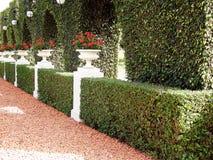 Bahai trädgård royaltyfria bilder