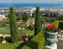 bahaien arbeta i trädgården haifa israel Royaltyfria Bilder