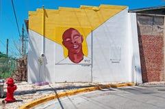 Bahama wioska, graffiti, malowidła ścienne, rysunki, uliczna sztuka, koguty, karmazynki, kogut, karmazynka, symbol Key West, kluc obrazy royalty free