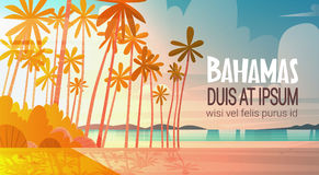 Bahamans Sea Shore Beach On Sunset Beautiful Seaside Landscape Summer Vacation Concept. Flat Vector Illustration Stock Image