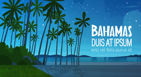 Bahamans Sea Shore Beach After Sunset Beautiful Seaside Landscape Summer Vacation Concept. Flat Vector Illustration Stock Photo