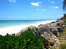 Bahamas Beach Front. Bahamas beach with scenic greenery and clear waters royalty free stock photos