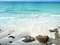 Bahamas Beach. A Bahamas white sand beach and clear shining waters Royalty Free Stock Photography