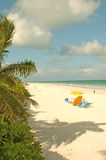 Bahamas Fast Ferry, Harbour Island 6. A view of the beach on Harbour Island Royalty Free Stock Photography