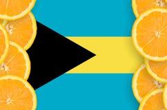 Bahamas flagga i vertikal ram för citrusfruktskivor royaltyfri foto