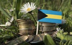 Bahamas flagga med bunten av pengarmynt med gräs Arkivfoton