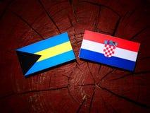 Bahamas flagga med den kroatiska flaggan på en trädstubbe Arkivfoton