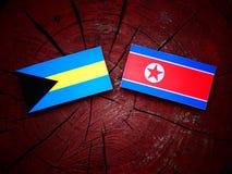 Bahamas flagga med den nordkoreanska flaggan på en trädstubbe Arkivfoton