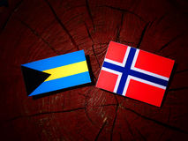 Bahamas flagga med den norska flaggan på en isolerad trädstubbe Arkivbilder