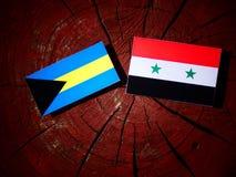 Bahamas flagga med den syrianska flaggan på en trädstubbe Royaltyfri Fotografi