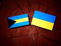 Bahamas flagga med den ukrainska flaggan på en isolerad trädstubbe Royaltyfri Fotografi