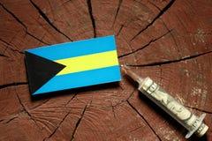 Bahamas flagga på en stubbe med injektionssprutan som injicerar pengar Arkivfoton