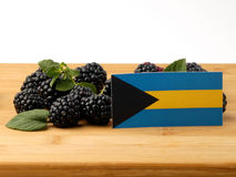 Bahamas flagga på en träpanel med björnbär som isoleras på en w Royaltyfri Foto