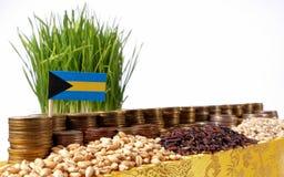 Bahamas flagga som vinkar med bunten av pengarmynt och högar av frö Royaltyfri Foto