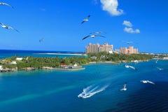 Bahamas pier Stock Photography