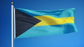 Bahamas señalan por medio de una bandera en la cámara lenta inconsútil colocada con alfa ilustración del vector