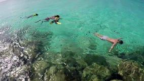 Bahamas snorkla stock video
