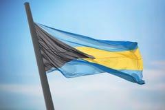 bahamy flagę Obrazy Stock