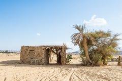 Оазис Bahariya Египет Стоковое Изображение RF