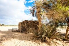 Bahariya oas egypt Royaltyfri Fotografi