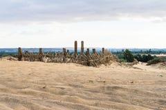 Bahariya Oasis. Egypt Stock Photo