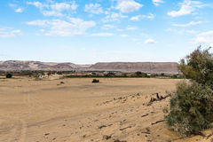 Bahariya Oasis. Egypt Royalty Free Stock Images