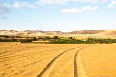 Bahariya Oasis. Egypt Stock Photography