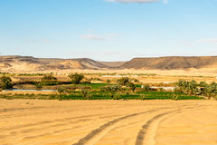 Bahariya Oasis. Egypt Stock Images