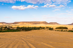 Bahariya Oasis. Egypt Royalty Free Stock Photo