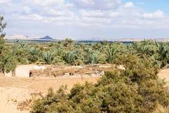 Bahariya Oasis. Egypt Royalty Free Stock Image
