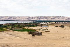 Bahariya Oasis. Egypt Stock Photos