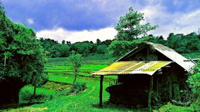 Bahay-kubo Stockfotografie