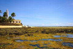 Bahia. Praia do Forte - Bahia - Northeast of Brazil stock photo