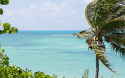 Bahia Honda stanu parka Atlantyk widok obrazy royalty free