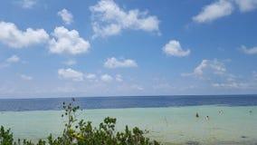 Bahia Honda Stat Park royaltyfri bild