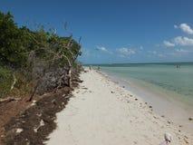 Bahia Honda State Park. Tropical beach in the Florida Keys Stock Images