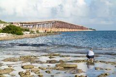 Bahia Ronda bridge on Florida Keys, USA Royalty Free Stock Photography
