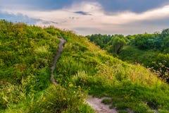 Bahn auf einem Hügel mit Wildflowers Stockfotos