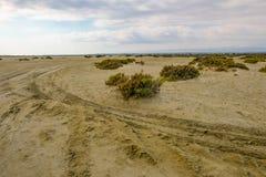Bahn in der Wüste mit Reifenkennzeichen und scrubby Wachstum Lizenzfreie Stockfotografie