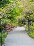 Bahn in einem blühenden Garten Stockfotografie