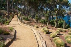 Bahn in einem botanischen Garten Lizenzfreie Stockbilder