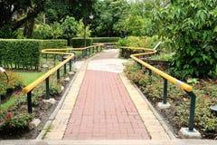 Bahn in einem ruhigen grünen Park Stockbild