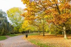 Bahn in einer lokalen Park Herbstzeit Lizenzfreie Stockbilder