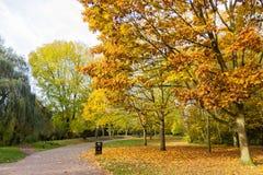 Bahn in einer lokalen Park Herbstzeit Stockfotos