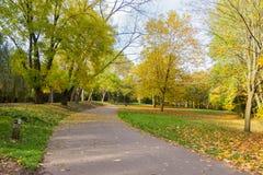 Bahn in einer lokalen Park Herbstzeit Stockbilder